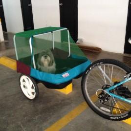 Remolque / Trailer / Carrito para bicicleta